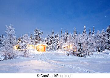 冬, 夜, ラップランド, スウェーデン