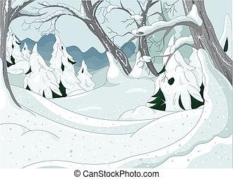 冬, 森林