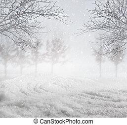 冬, 背景, 雪が多い