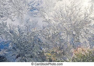 冬, 霜, パターン, 上に, 窓