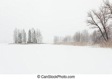 冻结, 风景, 冬季, 暴风雪, 湖