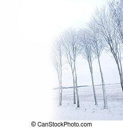 凍らせられた, 木