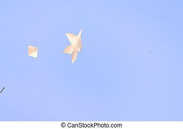 凧, 飛行, 伝統的である, 文化, 人気が高い, タイ人, summer., 星形