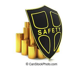 出資金, 保護される
