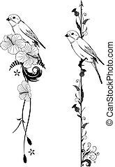 分切器, 矢量, 鳥