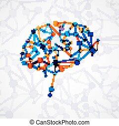分子的結構, 在, the, 形式, ......的, 腦子
