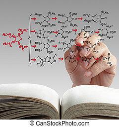 分子, 手, 構造, 図画