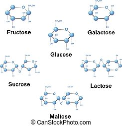 分子, 砂糖