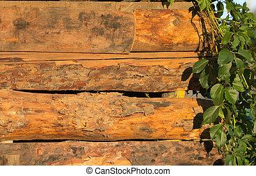 分支, 由于, 離開, 上, a, 木制, 背景