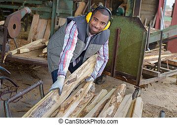 分類, ∥, 木材を伐採する