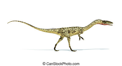 切り抜き, 科学的に, representation., 恐竜, 低下, coelophysis,...