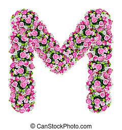 切り抜き, 花, m, 隔離された, アルファベット, 道, 白