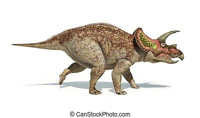 切り抜き, triceratops, representation., 科学的に, 隔離された,...