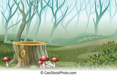 切り株, 森林