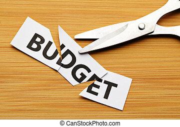 切口, 予算