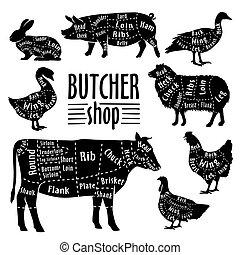 切口, 動物, 肉, 肉, 図, セット, butcher.