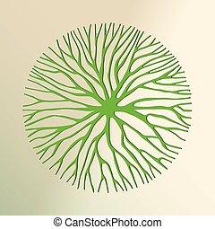 切口, 木, 環境, 概念, 緑, ペーパー