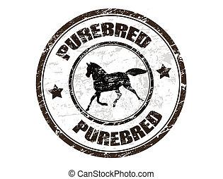 切手, purebred, 馬