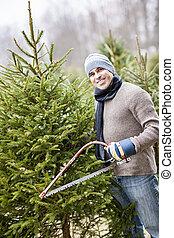切断, 木, クリスマス, 人