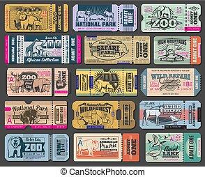 切符, 入口, 動物, 公園, 動物園, ベクトル, 野生