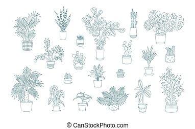 別, モノクローム, houseplants, アイコン, ライン, 芸術, style.