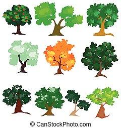別, 木, 種類, イラスト