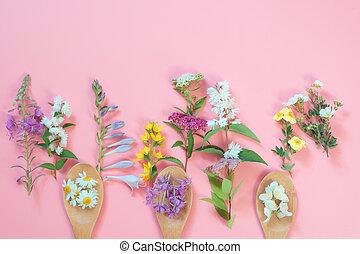 別, 牧草地, 野生の 花, 上に, ピンク, バックグラウンド。, 花, 構成, ∥で∥, コピー, space.