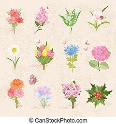 別, 美しい, 保温カバー, 花束, コレクション, bu, 花