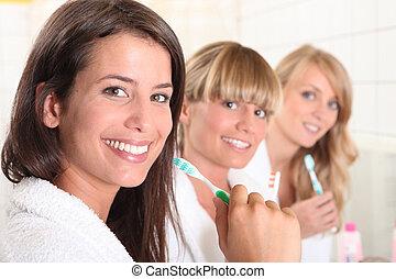 刷, 房子, 三, 他們, 伙伴, 女性, 牙齒