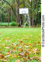前景, バスケットボール, 捨てられた, たが, 秋, 通り