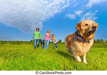 前部, 動くこと, 犬, 家族, 幸せ