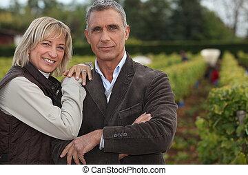 前部, winegrowers, ブドウ園