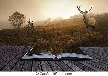 創造性, 概念, 圖像, ......的, 紅的鹿, stag, 在, 有霧, 風景, 出來, ......的, 頁,...