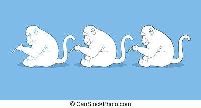 創造性, 猴子