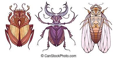 創造性, 要素, ベクトル, バックグラウンド。, オオタマオシコガネ, いたずら書き, 別, かぶと虫, 色, セット...