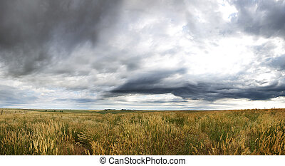 劇的, 草原, 風景