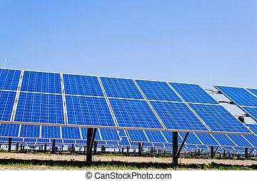 力, エネルギー, energy., 太陽, 選択肢, plant.