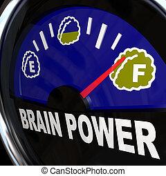 力, 知性, 処置, 創造性, 脳, ゲージ