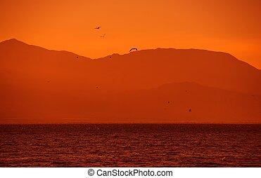 加利福尼亞,  salton, 美國, 海