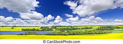 加拿大, 全景, 大草原, saskatchewan