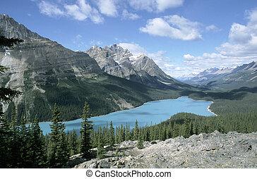加拿大, np, 湖, 碧玉, peyto, 艾伯塔