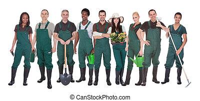 労働者, グループ, 庭師