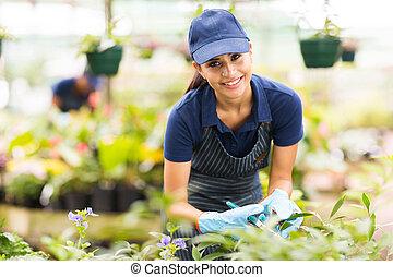 労働者, 託児所, 園芸, 若い