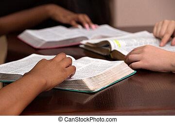 勉強しなさい, womens, devotional, 聖書