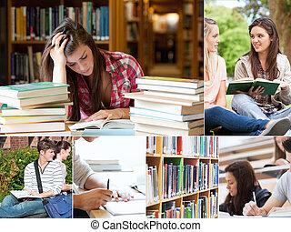 勉強, 生徒, コラージュ
