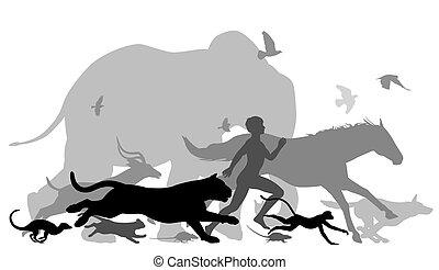 動くこと, 動物