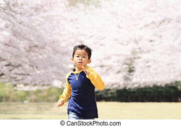 動くこと, 日本語, 男の子, そして, 桜, (third, 等級, ∥において∥, 基本, school)