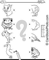 動物が彩色する, 映像, 半分, ゲーム, 本, マッチ
