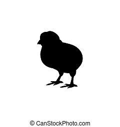 動物, ひよこ, 鳥, シルエット, 黒