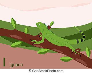 動物, アルファベット, iguana
